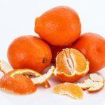 fruits oranges